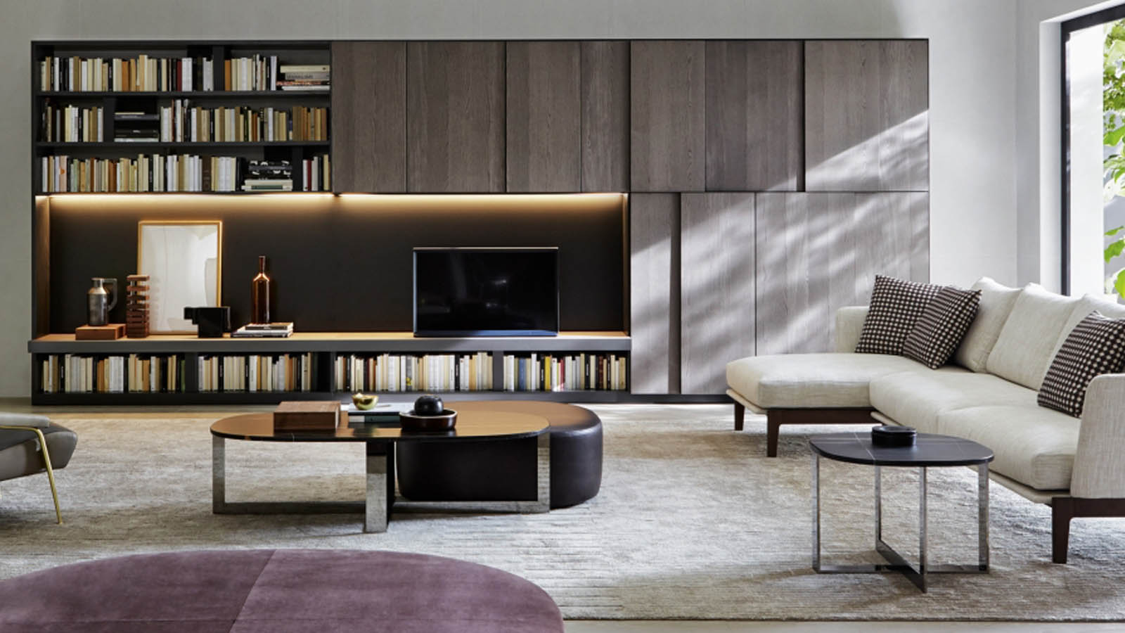 Molteni 505 a contemporary library
